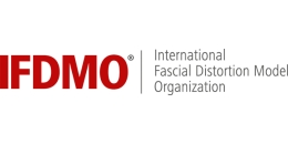 Викладі IFDMO